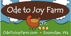 cropped-ode-to-joy-farm-logo-with-clouds2.jpg